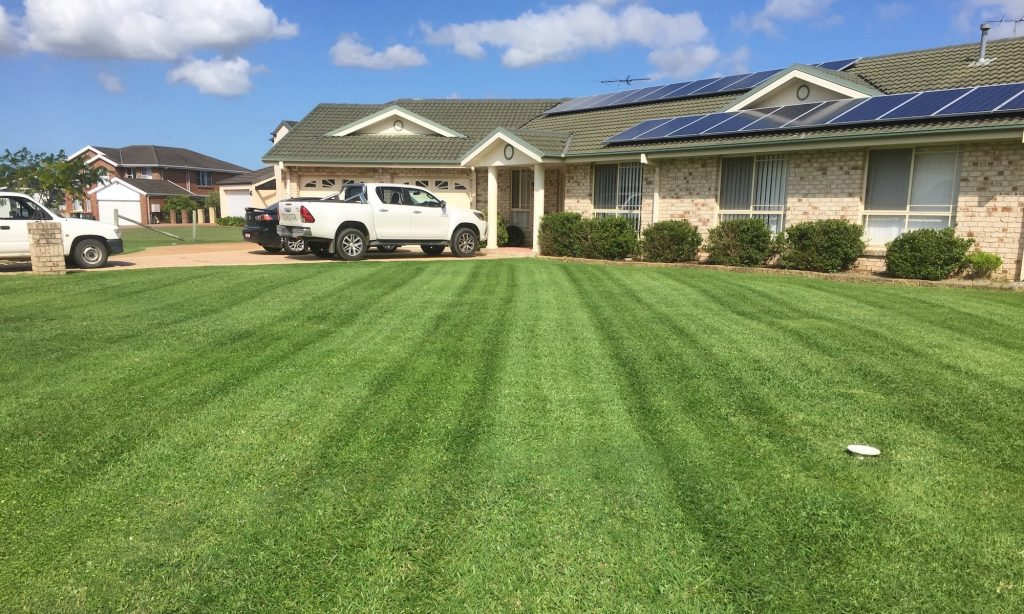 lawn mowing guide